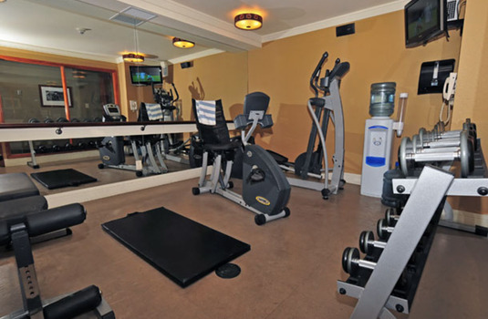 Resort carousel fox hotel   suites gym