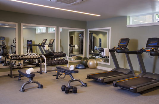 Resort carousel fitness center
