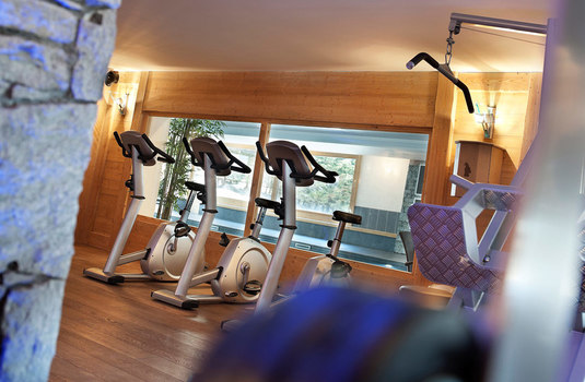 Resort carousel chalets jouvence gym
