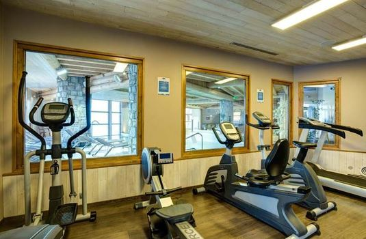 Resort carousel chalet peche gym