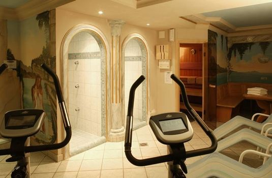 Resort carousel chalet stoanerhof gym