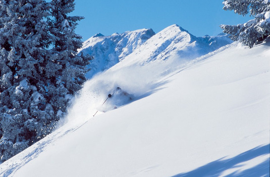 Vail Powder Skier (Photo © Jack Affleck)
