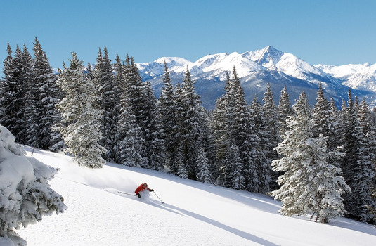 Vail Powder Skier Woods (Photo © Jack Affleck)
