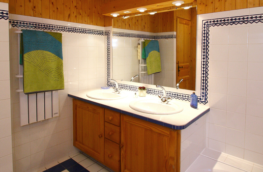 Chalet-Les-Jonquilles-shower-room2