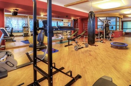 Resort carousel gardenhotel theresia gym