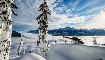 Whistler holiday info